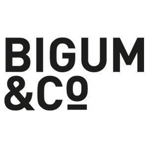 Christian Lisby uddannelse - Bigum&Co Digital Marketing Business Diploma